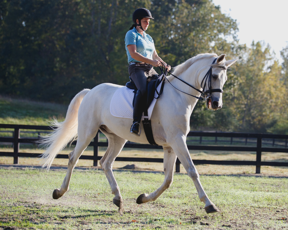 Kathy Duffy dressage Charming Milton Georgia horse farm